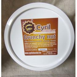 Pâte à tartiner crunchy nut